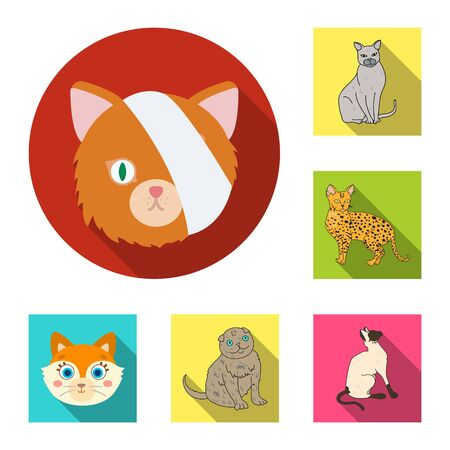 bitmap illustration of pet and sphynx icon. Set of pet and fun stock bitmap illustration. Imagens