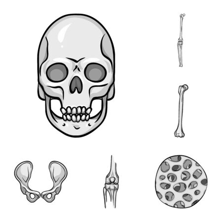 Isolated object of biology and medical icon. Set of biology and skeleton bitmap icon for stock. Фото со стока