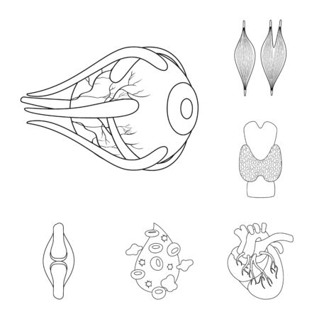 bitmap design of anatomy and organ sign. Set of anatomy and medical stock bitmap illustration. Banco de Imagens