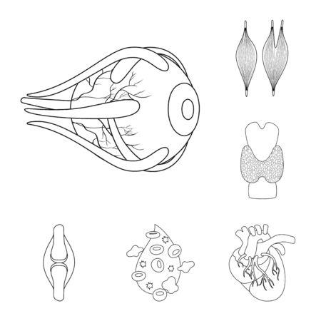 bitmap design of anatomy and organ sign. Set of anatomy and medical stock bitmap illustration. Stock Photo