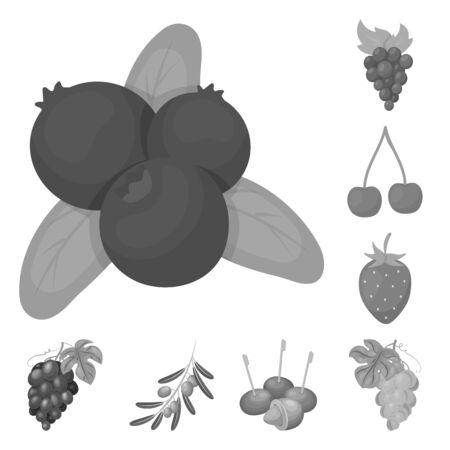 bitmap illustration of berry and fruit logo. Set of berry and redberry stock bitmap illustration.