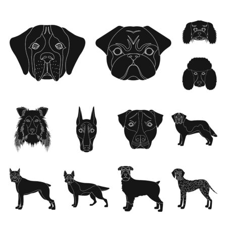 bitmap illustration of cute and puppy symbol. Collection of cute and animal stock bitmap illustration. Stock Photo