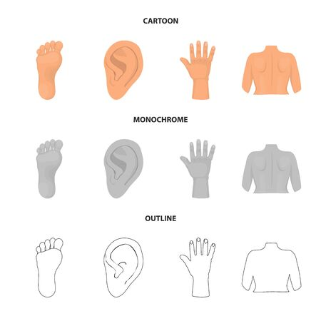 bitmap design of body and part symbol. Set of body and anatomy stock symbol for web. Reklamní fotografie