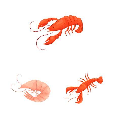 Vector illustration of shrimp and crab symbol. Collection of shrimp and sea stock symbol for web.
