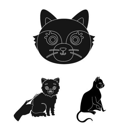 Isolated object of cat. Set of pet and fun stock bitmap illustration. Imagens