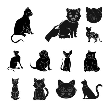 bitmap illustration of pet and sphynx. Set of pet and fun bitmap icon for stock.