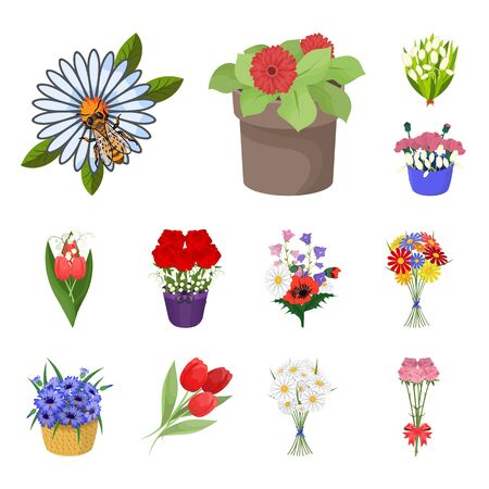 Isolated object of spring and wreath symbol. Collection of spring and blossom bitmap icon for stock. Stock Photo