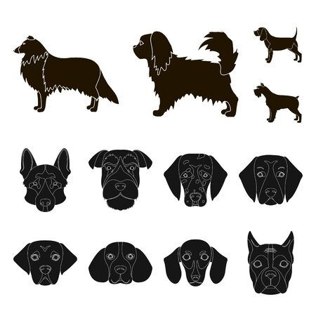 bitmap illustration of cute and puppy. Collection of cute and animal stock symbol for web.
