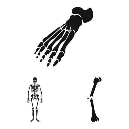Vector illustration of biology and medical. Collection of biology and skeleton vector icon for stock.