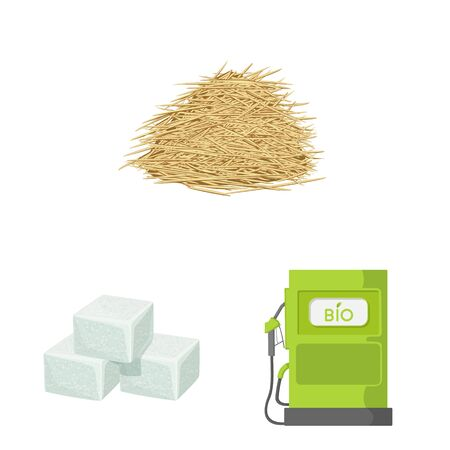 Vector illustration of sugarcane and cane icon. Collection of sugarcane and field stock symbol for web.