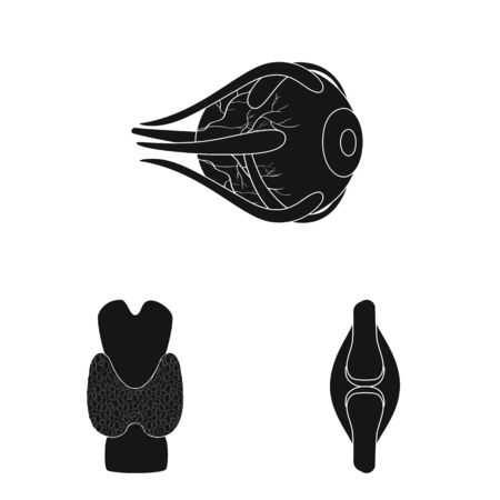 Vector illustration of research and laboratory icon. Set of research and organ vector icon for stock.