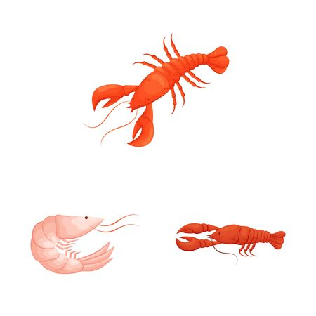 Isolated object of shrimp and crab sign. Set of shrimp and sea stock symbol for web.  イラスト・ベクター素材