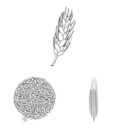 Isolated object of agriculture and farming icon. Collection of agriculture and plant stock symbol for web.