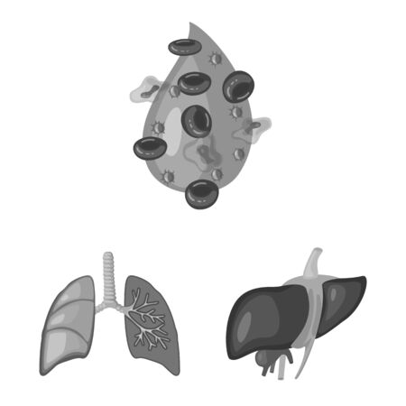 Isolated object of internal and medical icon. Collection of internal and health vector icon for stock. Illustration