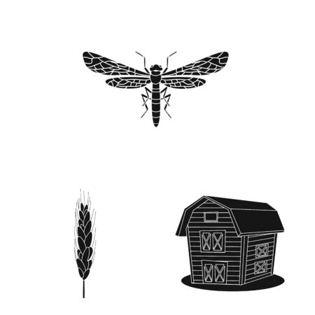 Isolated object of rye and plant. Collection of rye and corn vector icon for stock. 일러스트