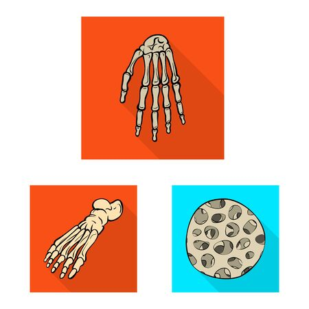 Vector design of bone and skeleton. Set of bone and human stock vector illustration.