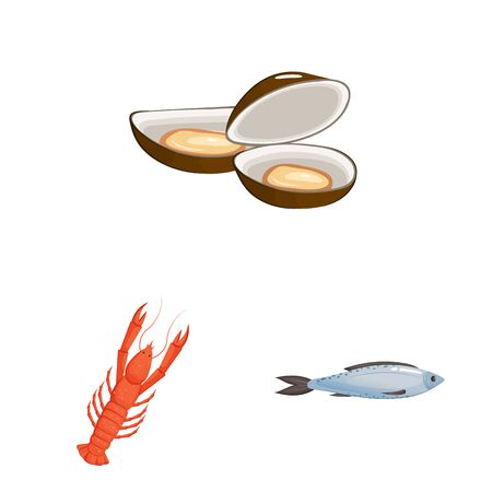 Vector illustration of food and sea. Collection of food and healthy stock vector illustration.