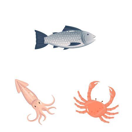 Vector illustration of food and sea symbol. Collection of food and healthy stock symbol for web.  イラスト・ベクター素材