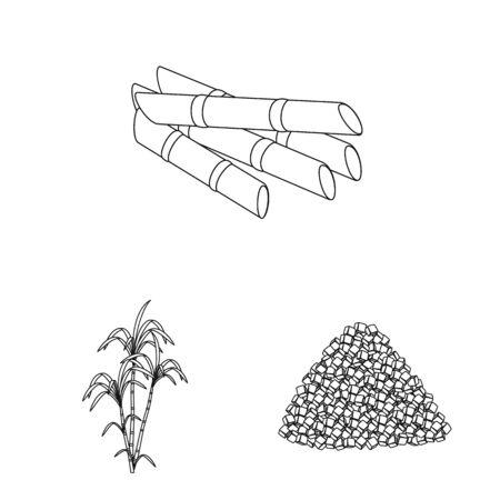 Vector design of sugar and field logo. Set of sugar and plantation stock vector illustration.