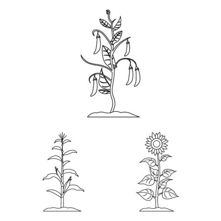 bitmap illustration of plant and bean icon. Collection of plant and process stock symbol for web. Zdjęcie Seryjne