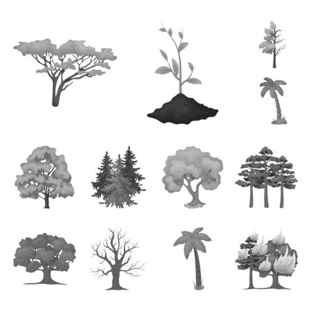 bitmap illustration of tree and forest. Set of tree and green bitmap icon for stock.