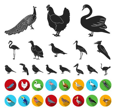 Types of birds black,flat icons in set collection for design. Home and wild bird bitmap symbol stock web illustration. Banco de Imagens