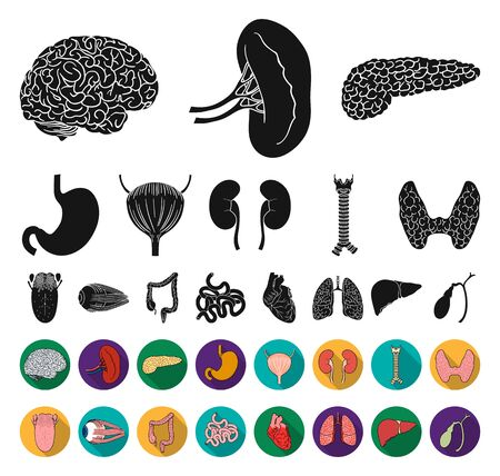 Human organs black,flat icons in set collection for design. Anatomy and internal organs bitmap symbol stock web illustration.