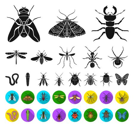 Different kinds of insects black,flat icons in set collection for design. Insect arthropod bitmap symbol stock web illustration.
