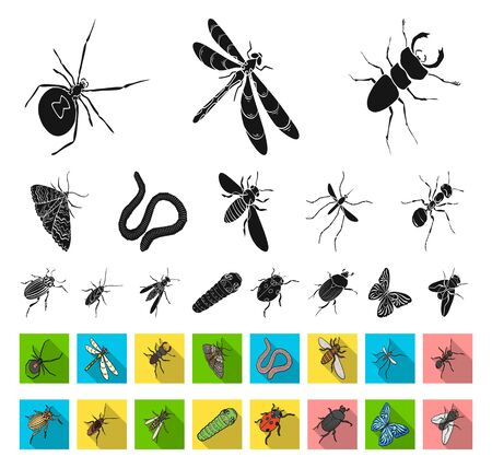 Different kinds of insects black,flat icons in set collection for design. Insect arthropod bitmap isometric symbol stock web illustration. Imagens