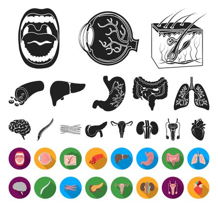 Internal organs of a human black,flat icons in set collection for design. Anatomy and medicine bitmap symbol stock web illustration.