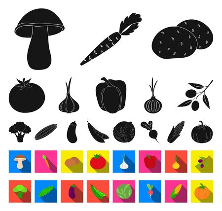 Different kinds of vegetables black,flat icons in set collection for design. Vegetables and vitamins bitmap symbol stock web illustration.