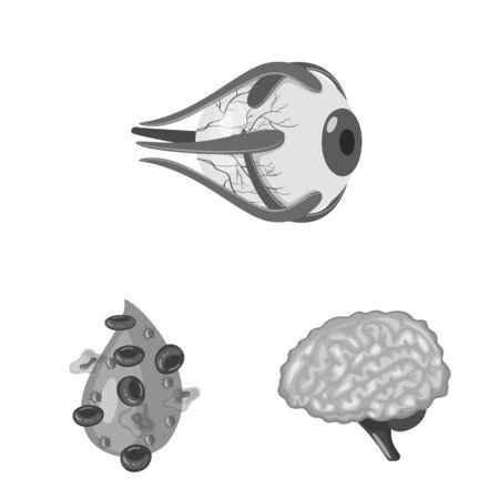 Vector illustration of internal and medical . Set of internal and health stock symbol for web. Illustration