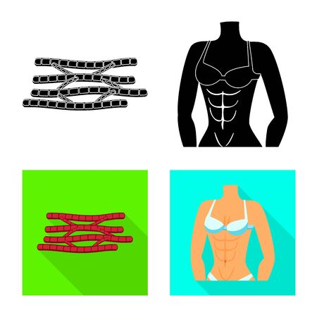 Vector design of fiber and muscular . Set of fiber and body stock vector illustration.