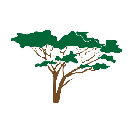 Tree in the savannah.African safari single icon in colour style vector symbol stock illustration web.