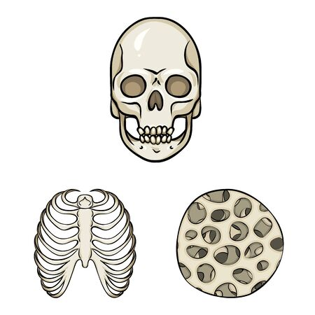 Vector design of bone and skeleton sign. Collection of bone and human stock symbol for web.