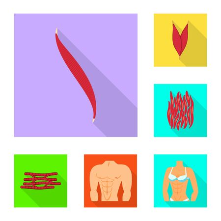 Isolated object of muscle and cells symbol. Set of muscle and anatomy vector icon for stock. Ilustracja