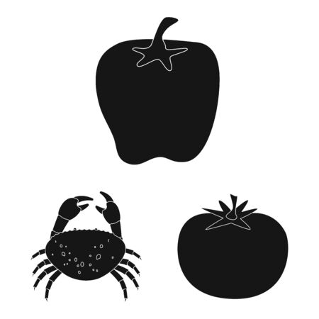 Vector illustration of organic and cooking icon. Set of organic and flavors stock symbol for web.