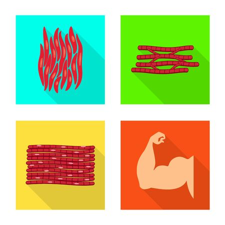 Vector design of muscle and cells. Set of muscle and anatomy vector icon for stock.