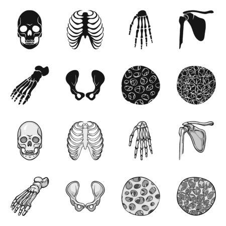 Vector illustration of medicine and clinic. Set of medicine and medical vector icon for stock. Stok Fotoğraf - 129331180