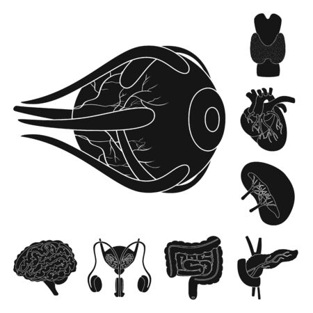 Vector design of research and laboratory. Set of research and organ vector icon for stock. Illustration