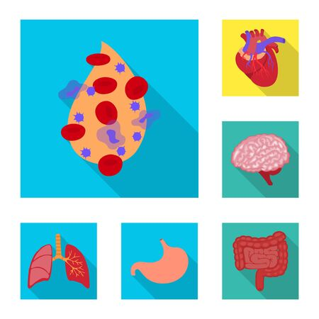 Vector illustration of human and health icon. Set of human and scientific vector icon for stock. Çizim