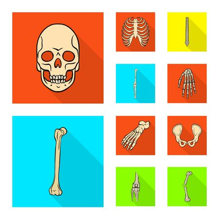 Vector design of bone and skeleton icon. Set of bone and human vector icon for stock.  イラスト・ベクター素材