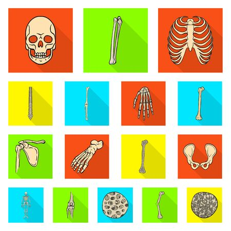 Isolated object of bone and skeleton sign. Set of bone and human vector icon for stock.