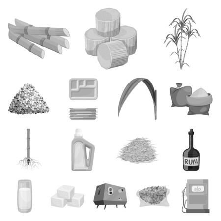 Vector design of sugarcane and cane. Set of sugarcane and field vector icon for stock. Иллюстрация