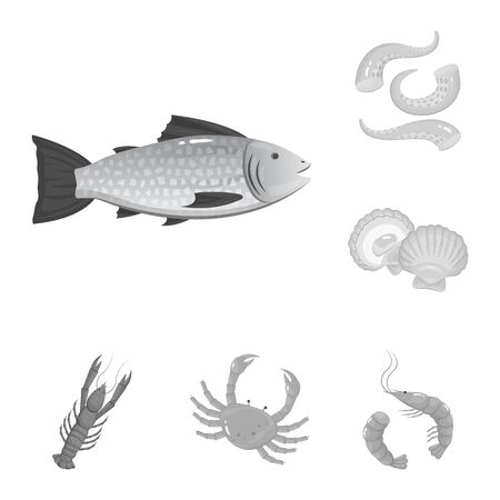 Isolated object of seafood and healthy sign. Set of seafood and ocean stock symbol for web. Illustration