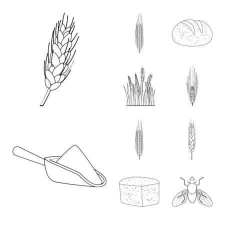 Vector design of agriculture and farming icon. Collection of agriculture and plant stock vector illustration. 일러스트
