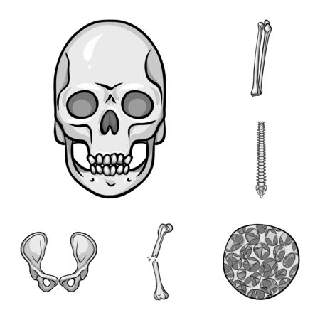 Isolated object of biology and medical sign. Collection of biology and skeleton vector icon for stock.