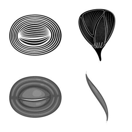 Vector illustration of fiber and muscular symbol. Collection of fiber and body stock symbol for web. Illustration