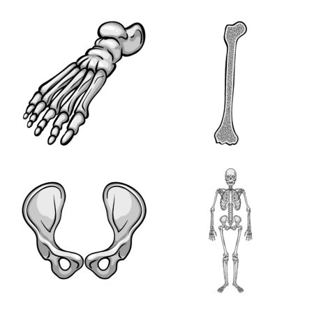 Vector illustration of biology and medical symbol. Collection of biology and skeleton stock symbol for web.