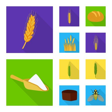 Vector design of wheat and corn sign. Collection of wheat and harvest stock vector illustration. Banque d'images - 129735327